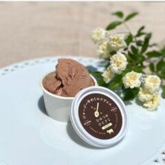 ジャージー牛のミルクアイス【ショコラ】(6個入り・送料込み)